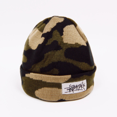 Anteater Ant-hat2-camo